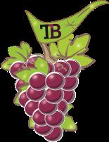 Logo Twinkleberry